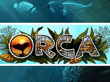 Автомат Orca в клубе Вулкан