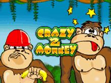 Игровые автоматы Crazy Monkey 2 в клубе Вулкан